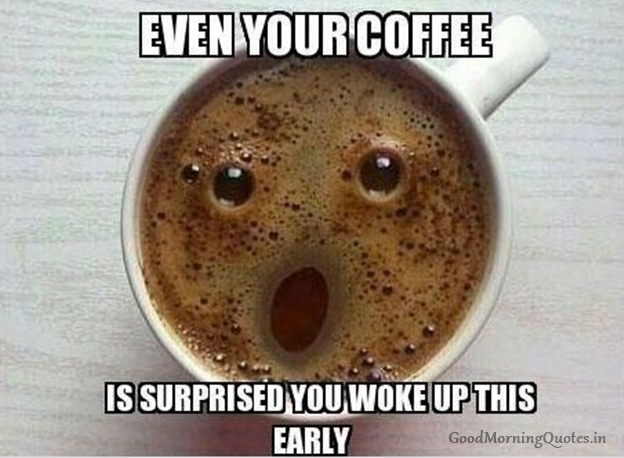 Wiki-How : Cute Funny Good Morning Photos for Frinds