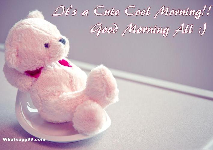 cute teddy cool morning wishes
