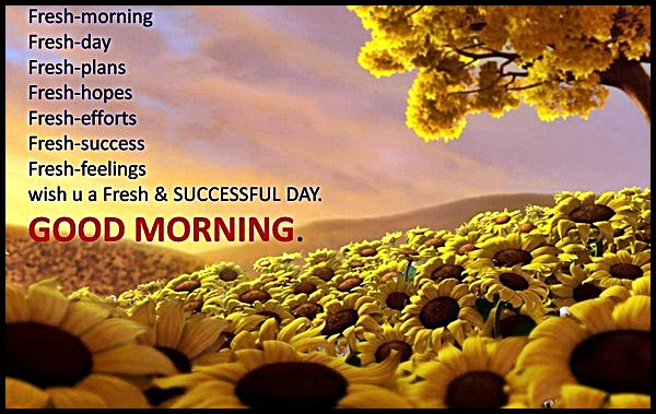Best Good Morning Messages / SMS for Friends